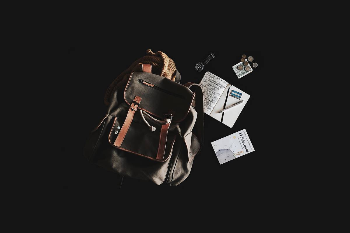 Education WordPress theme - Fields